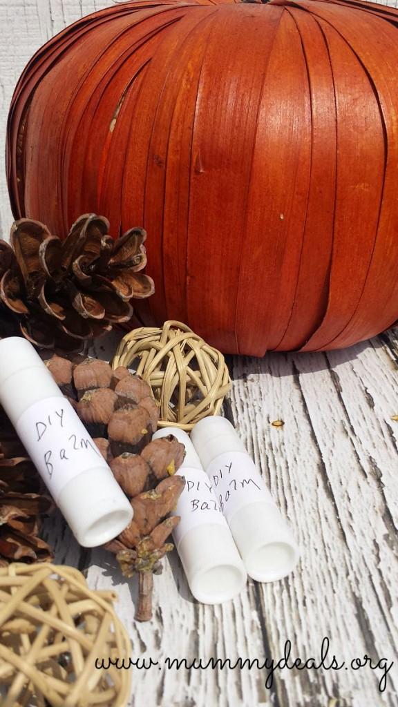 DIY Fall Spice Lip Balm Recipe 2